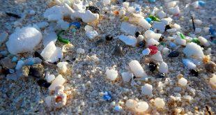 cevre ve insan sagligini tehdit eden mikroplastikler tbmmnin de gundeminde 310x165 - Çevre ve İnsan Sağlığını Tehdit Eden Mikroplastikler, TBMM'nin de Gündeminde