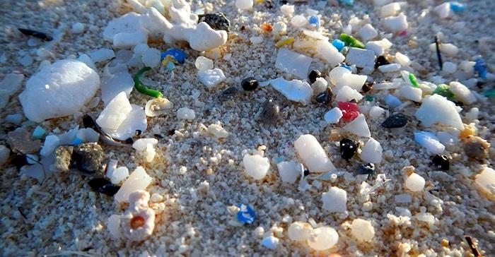 Çevre ve İnsan Sağlığını Tehdit Eden Mikroplastikler, TBMM'nin de Gündeminde
