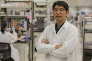 dna nanoyapilarinin katlanmasi konusunda yeni bir origami kesfedildi 310x205 - DNA Nanoyapılarının Katlanması Konusunda Yeni Bir Origami Keşfedildi