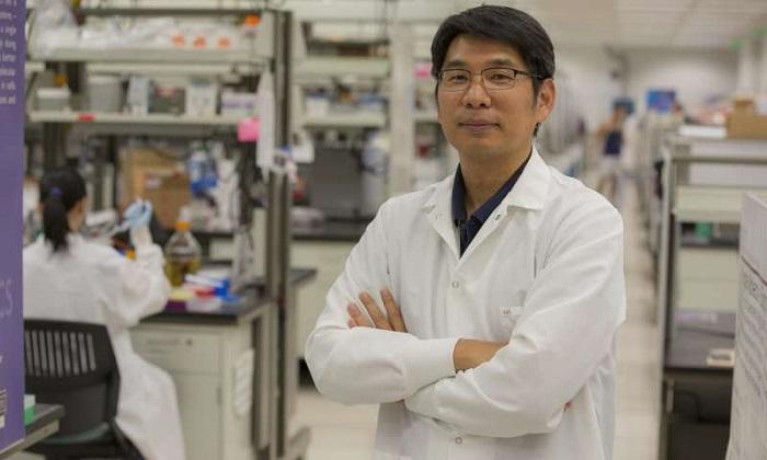 DNA Nanoyapılarının Katlanması Konusunda Yeni Bir Origami Keşfedildi