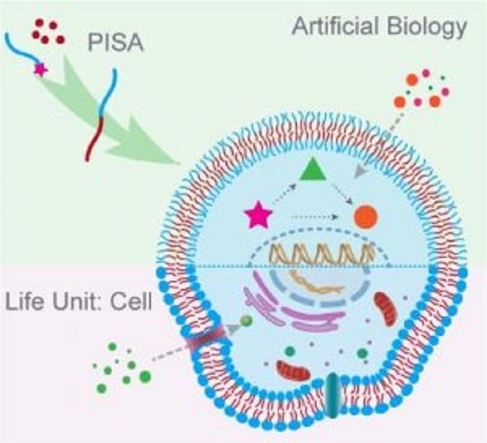 Polimer Kimyası Kullanarak Yaşam Sistemlerini Taklit Etmek