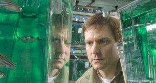 yeni kesfedilen bir gen ile kimyasallarin insanlar uzerindeki etkisi aydinlatilabilir 310x165 - Yeni Keşfedilen Bir Gen ile Kimyasalların İnsanlar Üzerindeki Etkisi Aydınlatılabilir