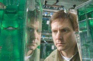 yeni kesfedilen bir gen ile kimyasallarin insanlar uzerindeki etkisi aydinlatilabilir 310x205 - Yeni Keşfedilen Bir Gen ile Kimyasalların İnsanlar Üzerindeki Etkisi Aydınlatılabilir