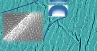 yeni metot kullanilarak doga dostu su gecirmez polimer filmler sentezlendi 310x165 - Yeni Metot Kullanılarak Doğa Dostu Su Geçirmez Polimer Filmler Sentezlendi