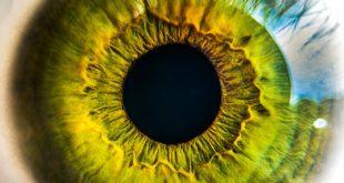 yeni nesil yapay retinalar 310x165 - Yeni Nesil Yapay Retinalar