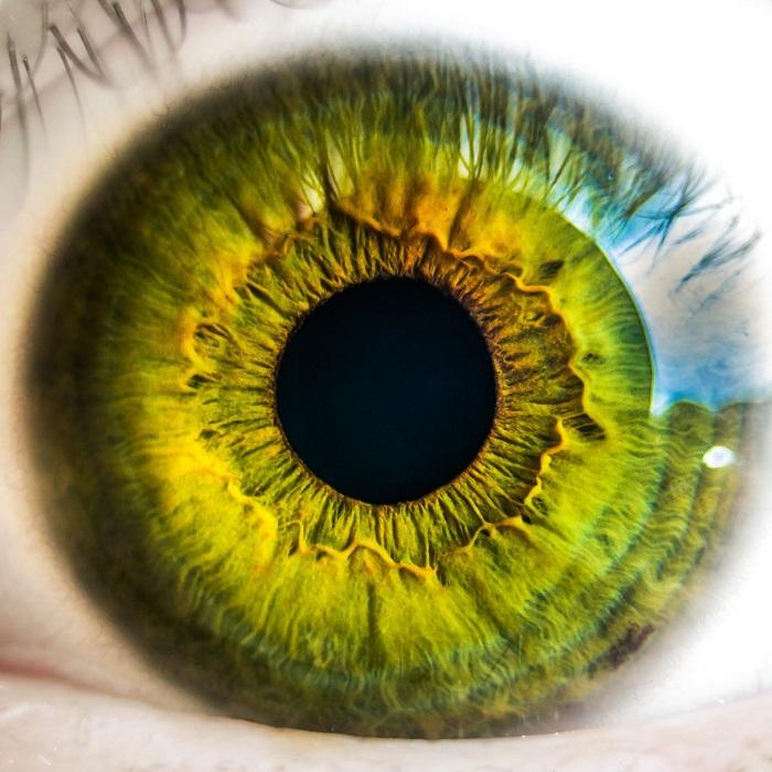 Yeni Nesil Yapay Retinalar