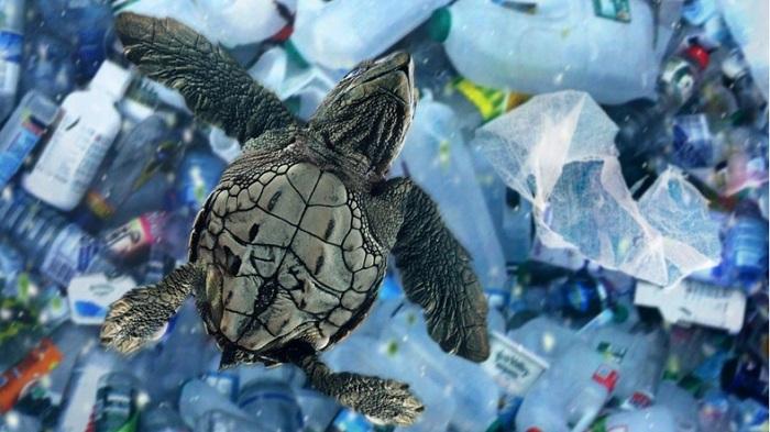 Bilim İnsanları, Dünyanın En Derin Çukurunda Bile Plastik Atıklara Rastladı