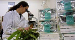 hollandada uyusturucu kacakcilari calistirmak icin kimya ogrencilerinin pesine dusuyor 310x165 - Hollanda'da Uyuşturucu Kaçakçıları Çalıştırmak için Kimya Öğrencilerinin Peşine Düşüyor