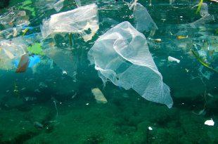 norvec plastikle mucadelede odul sistemine gececek 310x205 - Norveç, Plastikle Mücadelede Ödül Sistemine Geçecek