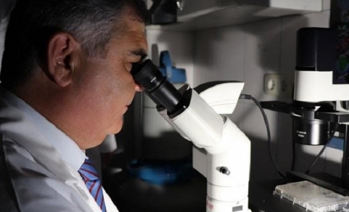 Prostat Kanserine Bor Tedavisi