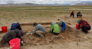 tas devri insanlari tibet platosunu fethettiler 310x165 - Taş Devri İnsanları Tibet Platosu'nu Fethettiler