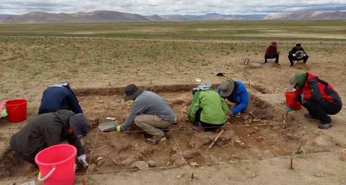 Taş Devri İnsanları Tibet Platosu'nu Fethettiler