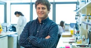 arastirmacilar kansere karsi bagisiklik sistemini aktiflestirmek icin yeni bir mekanizma ortaya koyuyor 310x165 - Araştırmacılar Kansere Karşı Bağışıklık Sistemini Aktifleştirmek için Yeni Bir Mekanizma Ortaya Koyuyor