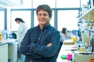 arastirmacilar kansere karsi bagisiklik sistemini aktiflestirmek icin yeni bir mekanizma ortaya koyuyor 310x205 - Araştırmacılar Kansere Karşı Bağışıklık Sistemini Aktifleştirmek için Yeni Bir Mekanizma Ortaya Koyuyor