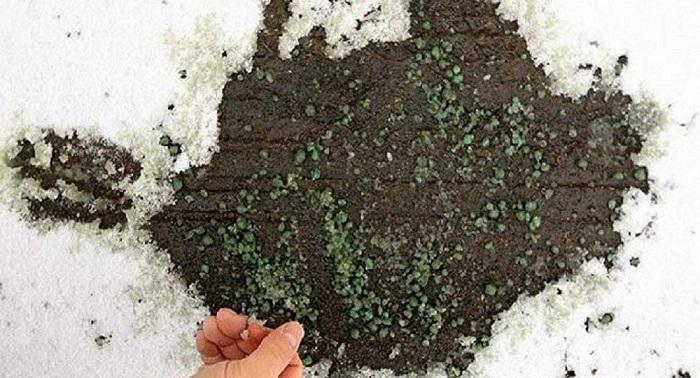 Türk Kimyagerden Kar ve Buzu Kısa Sürede Eriten Granül: Buz Yak