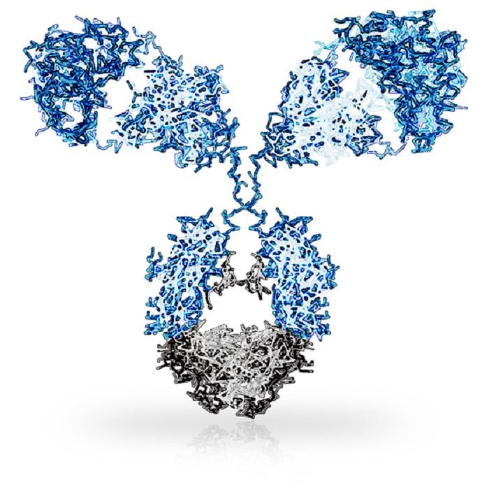 BioNtech, MAB Discovery Şirketinin Antikor Birimini Bünyesine Kattı