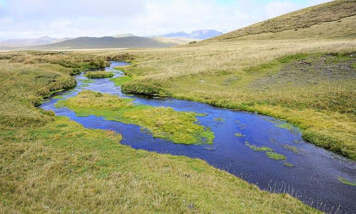 Biyoloji Profesörü, Nehir Ekolojisini Küresel Boyutta İnceledi