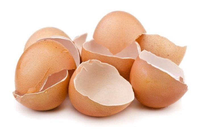 Bilim İnsanları, Yumurta Kabuğunda Enerji Depolamayı Başardılar