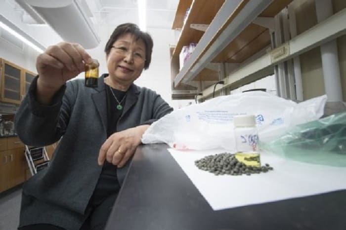 Milyonlarca Ton Plastik Atık, Temiz Yakıtlara ve Diğer Ürünlere Dönüştürülebilir