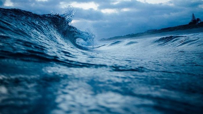 Bilim İnsanları Okyanustaki Yağları Yiyen Bakteri Keşfetti