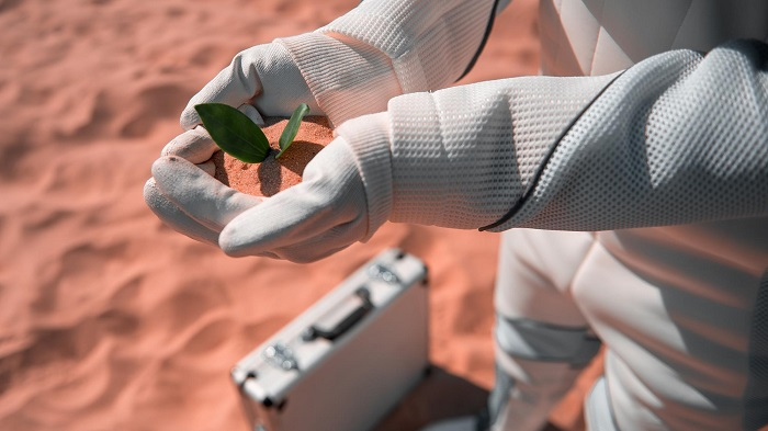 Mars'ta Tıbbi Bitki Yetiştirmek için Marul Kullanılabilir
