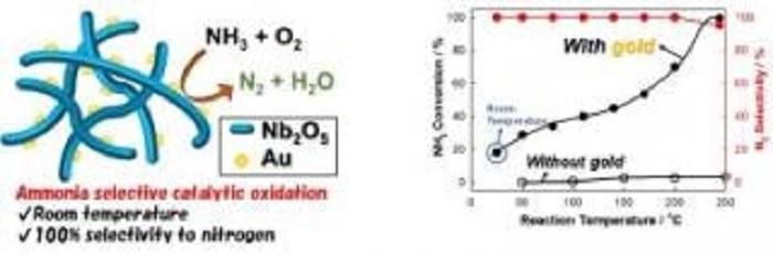Metal Oksit Çerçevesi Üstündeki Altın Nanopartiküller Amonyak'ı Zararsız Hale Dönüştürüyor