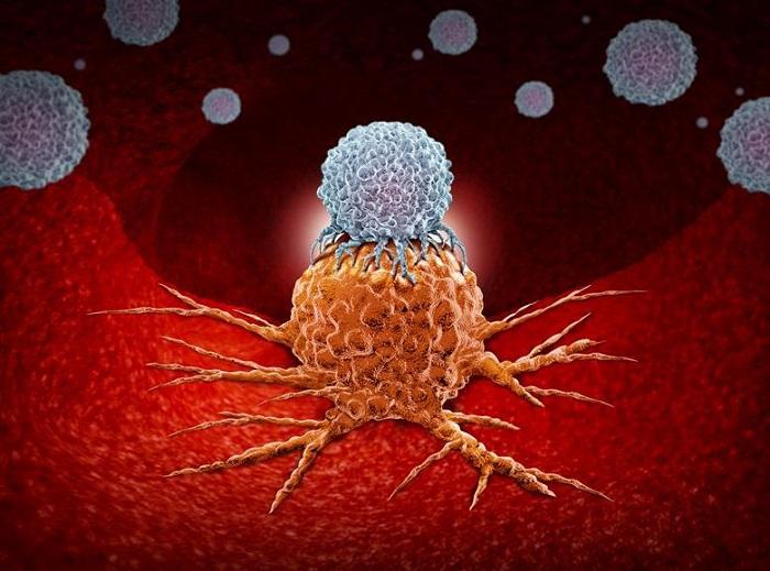 Tek Hücreli Damlacık Mikroakışkanlarının Taraması İmmünoterapileri Hızlandırdı