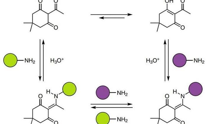 Kimyacılar, Geri Dönüşümlü Amin ve Triketon Kullanarak Termoset Polimer Yaptı
