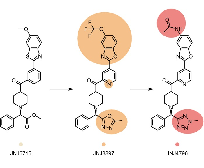 Küçük Moleküller Grip Virüsünün Zayıf Noktasını Buluyor