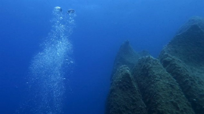 Araştırmalar, Okyanusların Oksijen Miktarı Hakkında İlginç Sonuçlar Ortaya Koydu