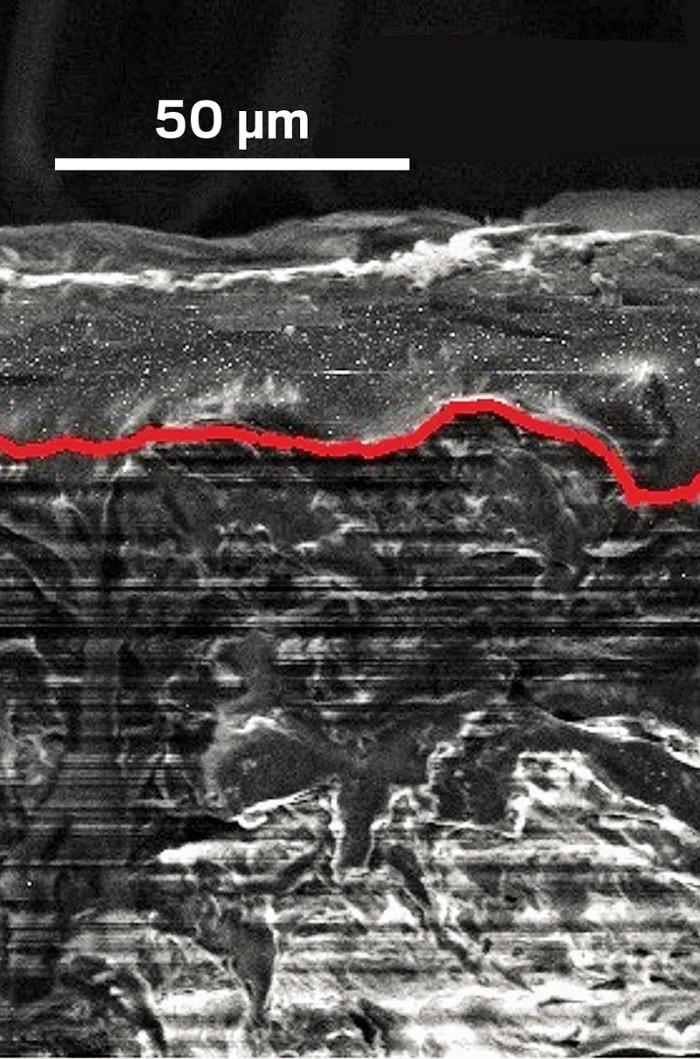Katı Elektrolit, Sodyum-Kükürt Bataryanın Ömrünü Uzatır