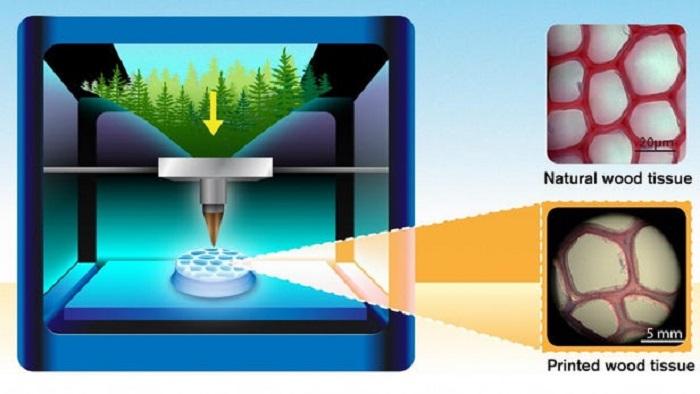 3D-Baskı Teknolojisindeki Çığır Açan Gelişme Tahta Ürünlerin Basılmasına Giden Yolu Açıyor