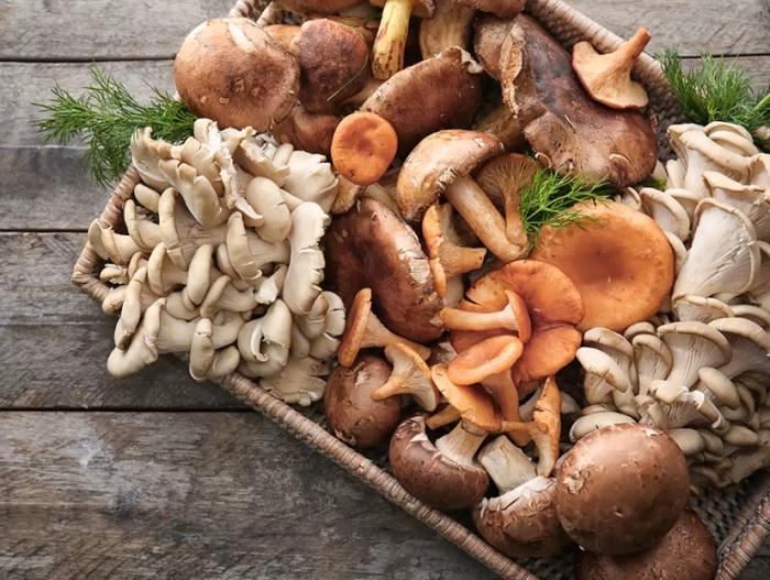 Mantarlar : Ergotiyonin ve Glutatyonun Zengin Bir Antioksidan Kaynağıdır