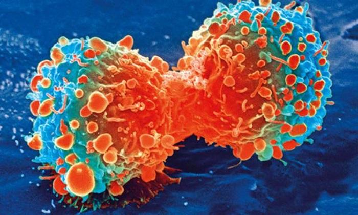 Eksozomların Spesifik Olarak Tanımlanabildiği Yeni Bir Teknik