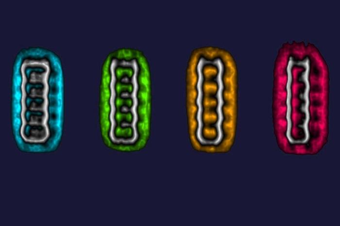 Moleküllerin Elektron Alıp Verdikçe Şekil Değiştirmesi Görüntülendi