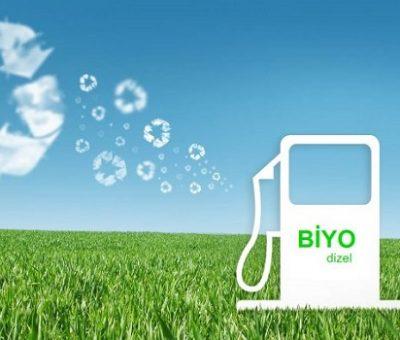 Yeşil Kimya Ölçümlerinin Kullanılması ile Atık Yemek Yağından Biyodizel Üretim Optimizasyonu