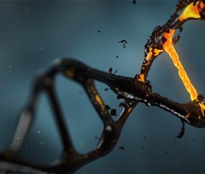 Alzheimer Hastalığı ile İlişkili Yeni Epigenetik Belirteçler Keşfedildi