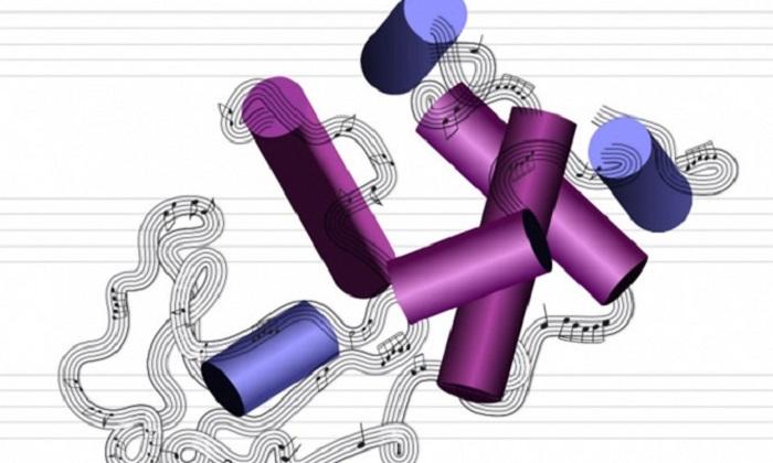 Protein Molekülleri Şarkı Söyleyecek