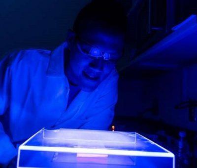 Sera Gazlarına Bakteriyel Çözüm