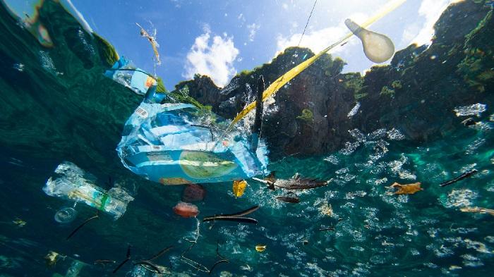 Akarsulardaki Plastik Atık Problemi Hollandalı Mucit Sayesinde Çözülecek