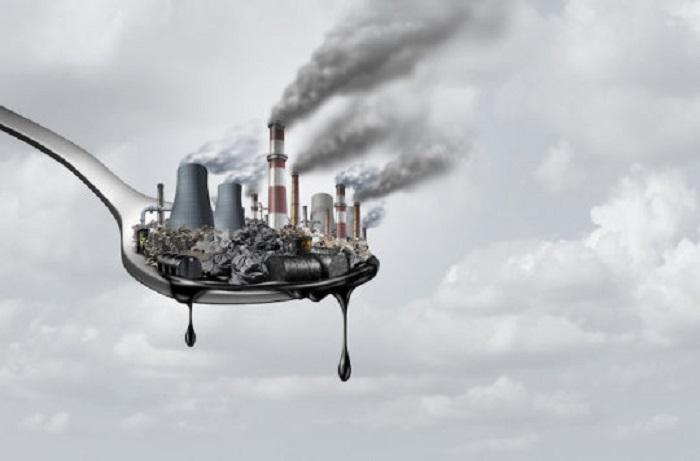 Çevresel Toksinler Bağışıklık Sistemini Nesilden Nesile Zayıflatıyor