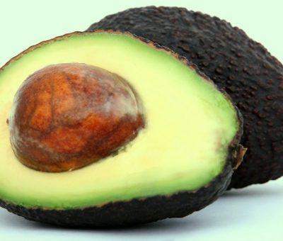 Avokadodaki Bir Bileşik Obezite ve Diyabetle Savaşıyor