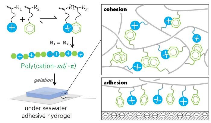 Deniz Suyunda Süper Yapıştırıcı Gibi Davranan Biyo-İlham Hidrojel