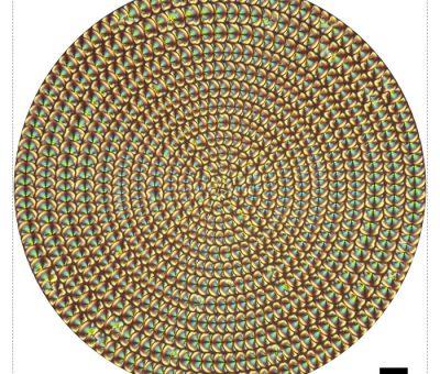 Sıvı Kristalli Hassas Mercekler ile 4-B Görüntüleme