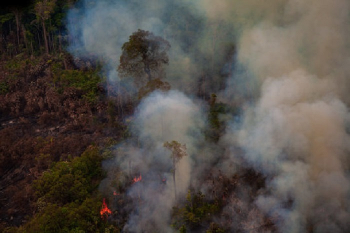 Amazon Ormansızlaşma ve Yangın Sayısı 2019 Yılının 'Normal' Bir Yıl Olmadığını Gösteriyor