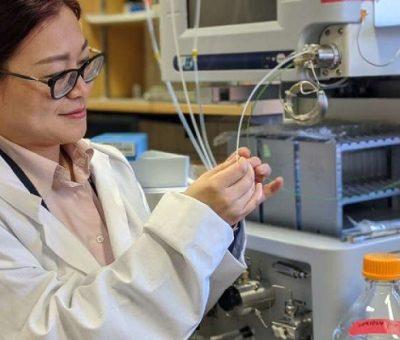 Araştırmacılar Kendini Onarabilen Yapay Kıkırdak Yaratıyor