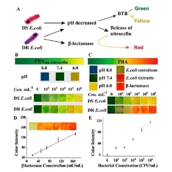 Bilim İnsanları, Enfeksiyona Göre Renk Değiştiren Akıllı Bandaj Geliştirdi