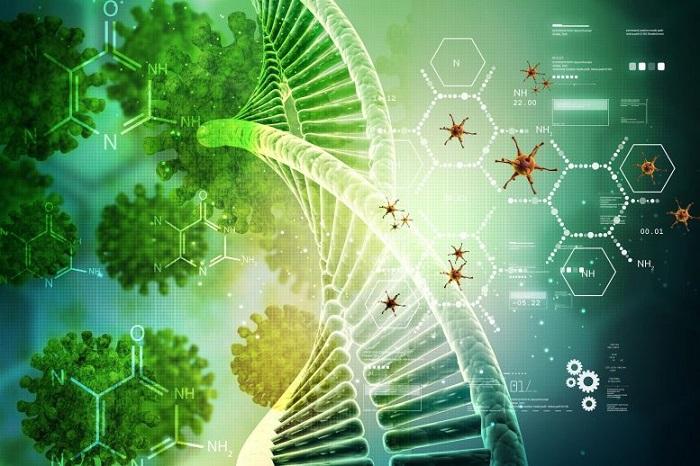 Kimyagerler Virüsleri Önleyen Yeni Bileşikler Tasarlıyor - Koronavirüsün Çoğalmasını Engelliyor