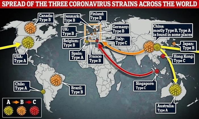 SARS-CoV-2'nin Dünyaya Yayılırken Üç Farklı Mutasyona Uğradığı Keşfedildi