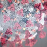 Türk Bilim İnsanları Koronavirüsün Kodunu Çözdü